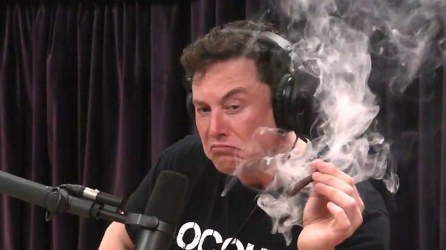 Elon Musk notorycznie wpływa na kurs kryptowalut