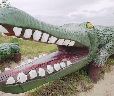 Krokodyl to symbol Okuninki.