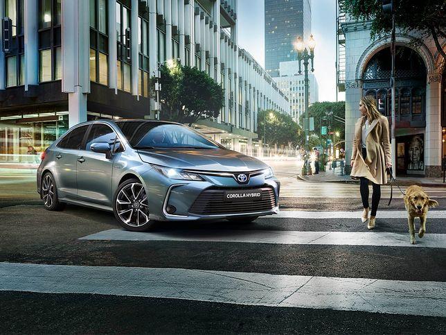 Nowe samochody w 2019 roku – na co warto zwrócić uwagę?