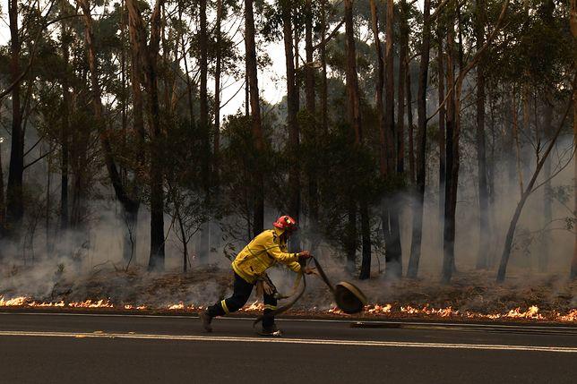 Pożary w Australii. Na miejscu cały czas pracują służby - z kraju oraz Kanady, USA i Nowej Zelandii