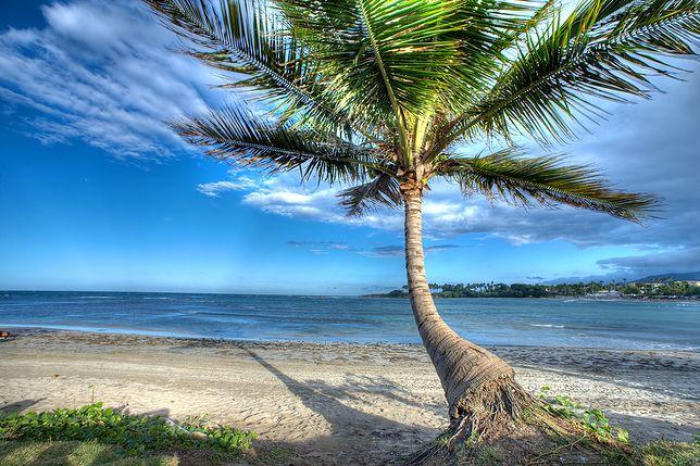 Atrakcje Dominikany