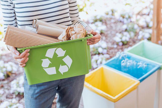 Segregacja śmieci – czy to ma sens?