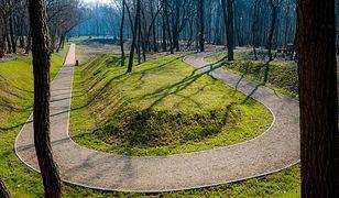 Sosnowiec. Za ponad 4 miliony miasto zyska efektowny park