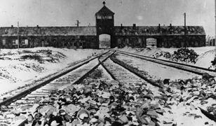 Ambasador RP przyjął wyjaśnienia ADL w sprawie Holokaustu