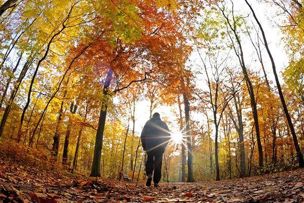 Polska się rozpromieni - prognoza pogody na 25 i 26 października