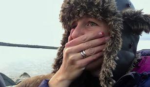 Setki morsów kończy swój żywot przy brzegu oceanu