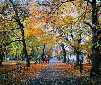 Pogoda na czwartek, 31 października