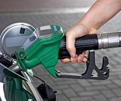 Opłata drogowa nie spowoduje podwyżek cen paliw? Lotos zabiera głos