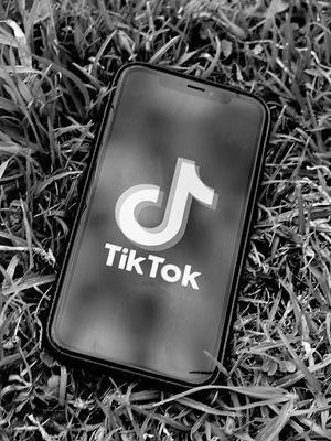 Pato TikTok. Idiotyczne trendy i wyzwania