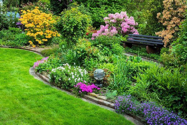 Dzięki łatwym w montażu płotkom oddzielimy trawnik od np. rabat kwiatowych lub chodnika