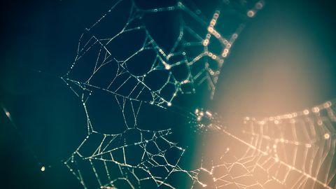 NetCrunch Tools – darmowy niezbędnik do diagnozowania sieci