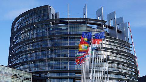 Wybory do Parlamentu Europejskiego: Latarnik pomoże zagłosować