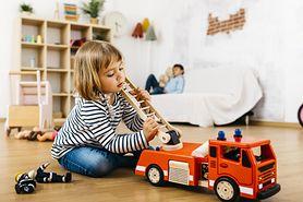 Zabawki dla 2-latka. Które wybrać?