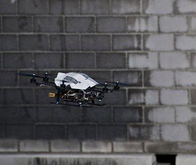 Orły także będą polować na drony