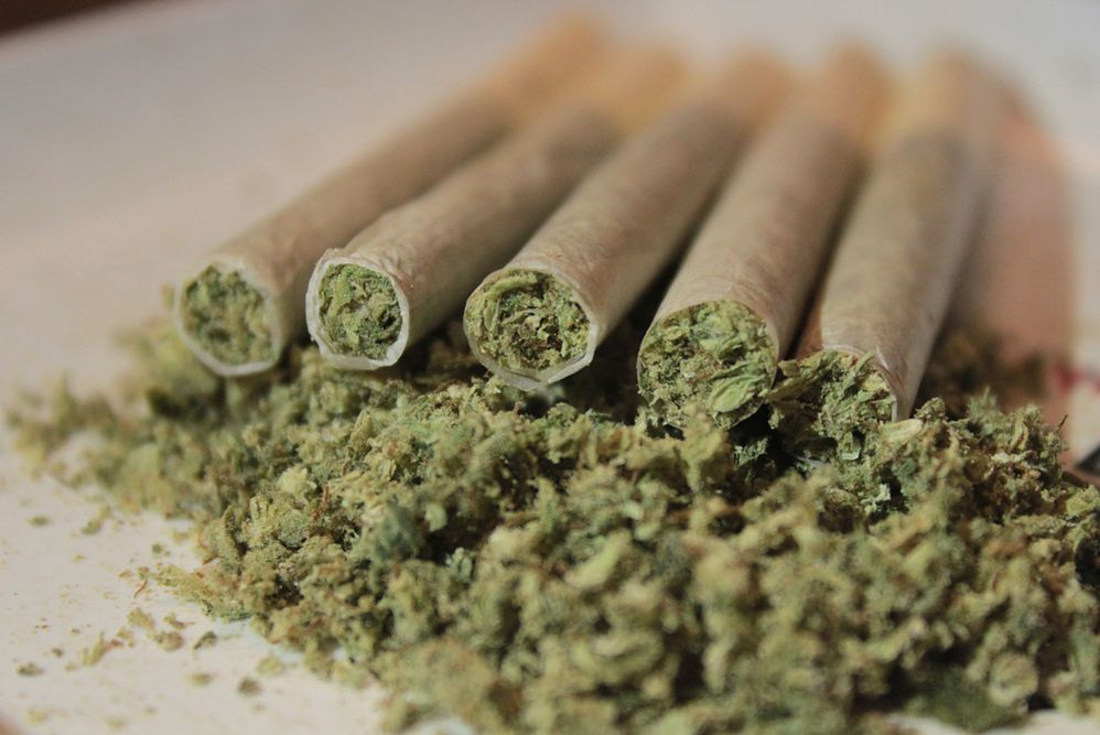 Legalizacja marihuany na wyspie Jersey. Ma przyciągnąć turystów