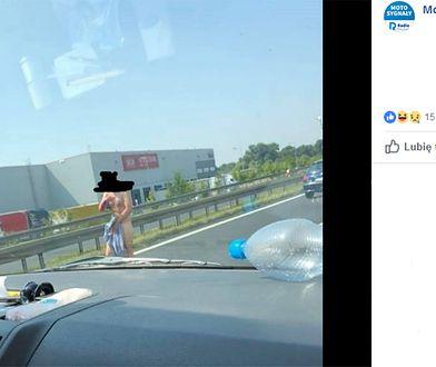 Nagi mężczyzna na S11 biegał po autach. Akcja służb