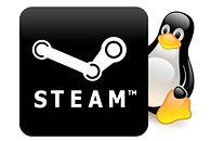 To chyba było oczywiste: Valve Steambox wykorzysta Linuksa. Premiera w 2013 r.