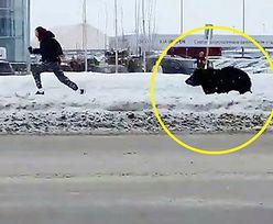 Rosjanie zbulwersowani. Do akcji musiała wkroczyć policja i władze miasta