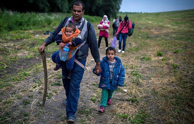Polska przyjmie głównie uchodźców z Syrii (na zdj. na granicy serbsko-węgierskiej)