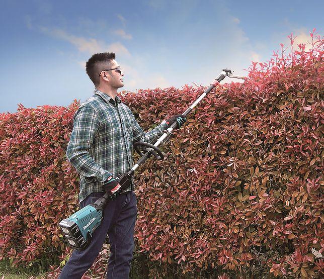 Narzędzia, bez których nie obejdzie się żaden majsterkowicz i posiadacz ogrodu