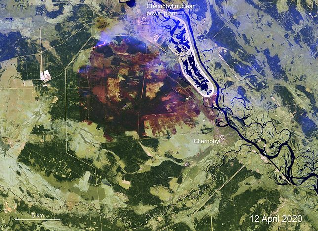 Ukraina. Ugaszenie pożaru w strefie czarnobylskiej potwierdzono w oficjalnym komunikacie