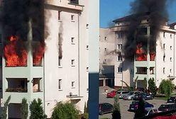 Pożar mieszkania na Białołęce. Na miejscu pięć zastępów straży pożarnej