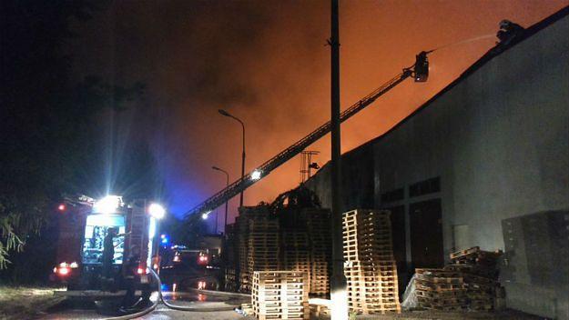 Dwa pożary hal magazynowych na Śląsku. Prokuratura wszczęła śledztwo