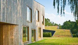 Niezwykłe domy z zielonym dachem, które wynurzają się z ziemi. Zdjęcia nowoczesnych domów