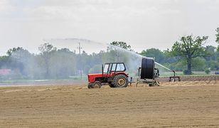 Upały dają się we znaki rolnikom