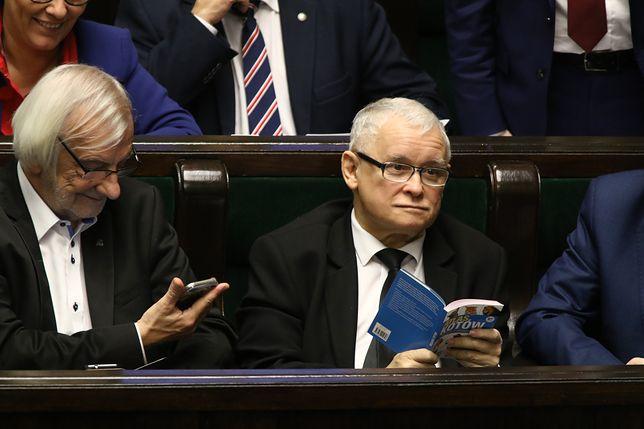 Ewa Koszowska: Prezes ma kota w głowie?