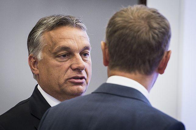 Węgierski premier Wiktor Orban (odwrócony plecami: Donald Tusk) - zdj. arch.