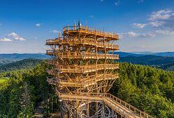Wielka atrakcja Warmii i Mazur. W Kurzętniku powstaje imponująca wieża widokowa