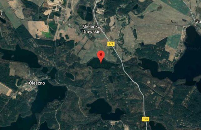 Przewrócona łódź na jeziorze Wilże wywołała akcję ratunkową
