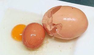 Farmer nigdy nie widział tak dużego jaja