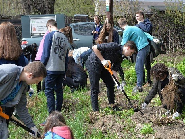 """""""Ochotnicy warszawscy"""" zasadzili 700 drzew"""