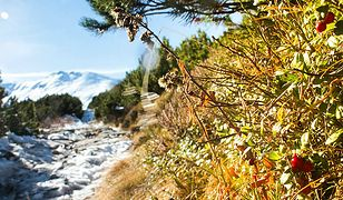 Uwaga na nietypowe warunki w Tatrach. TOPR apeluje o ostrożność