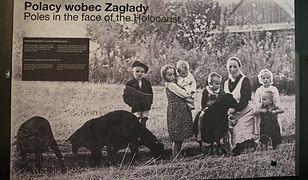 Cała rodzina Ulmów poniosła śmierć za ukrywanie Żydów. Ale nie była to jedyna postawa Polaków wobec Holocaustu