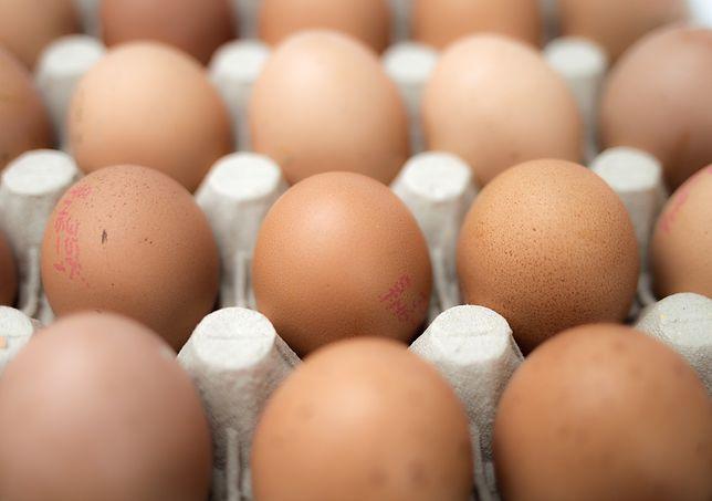"""Skażone jaja w Niemczech. """"To przestępstwo"""""""