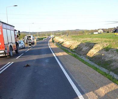 Kuropatwa uderzyła w jadącego motocyklistę
