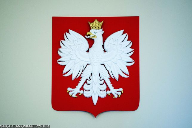 Godło Polski może być plagiatem? Nowe ustalenia historyka z Kielc