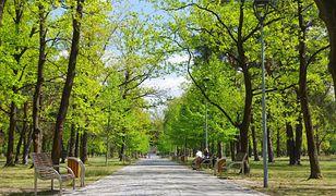 Koronawirus w Polsce. 70-latka weszła do parku podczas epidemii. Uchylono karę 12 tys. zł