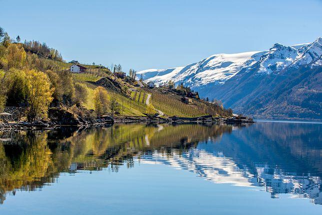 Sørfjorden należy do najpopularniejszych miejsc w Norwegii