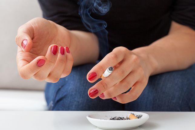 Wyniki badań nad podgrzewaczami tytoniu. Mniej ryzykowne niż papierosy