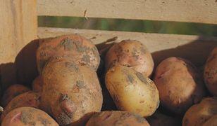 Jak przechowywać ziemniaki?