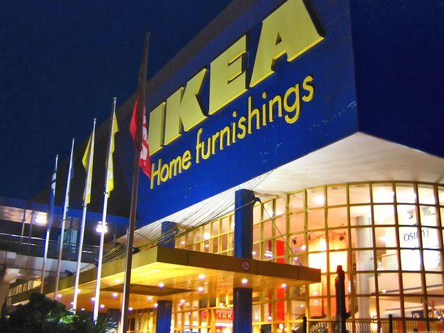 Skala inwestycji Ikei na Ukrainie jeszcze nie jest znana