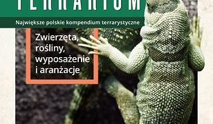 Terrarium. Zwierzęta, rośliny, wyposażenie, aranżacje