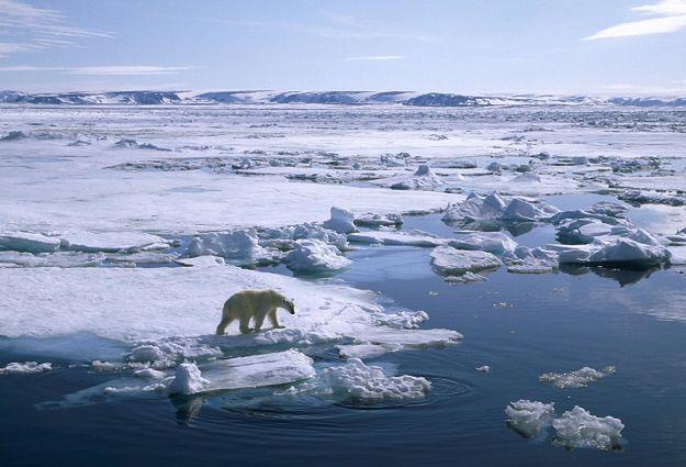 Arktyka skrywała tajną niemiecką bazę z czasów II wojny światowej