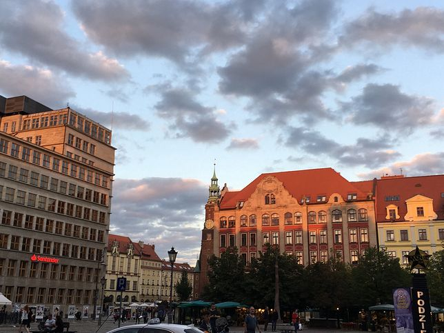Wrocławski Budżet Obywatelski zmienia miasto. Parki, ścieżki i Wyspa Widmo. Projekty czekają na wsparcie