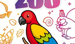 Zabawa kolorami. Zoo