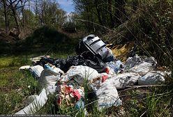 Zostawił śmieci w lesie, spotkała go kara. Nagranie z Tiktoka podbija sieć